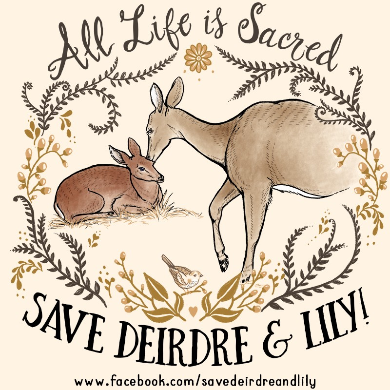 All Life is Sacred - Save Deirdre and Lily